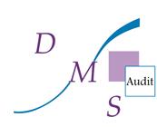 Partner - DMS Audit